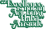Excellence is not an Act